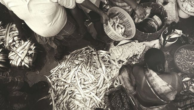 Mumbai Fish Market Bhau Cha Dhakka Ferry Warf Fish For Sale Princess Docks