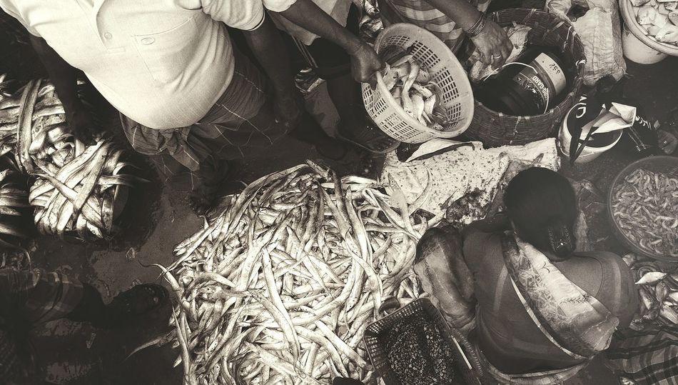 Mumbai Fish Market Bhau Cha Dhakka Ferry Warf Fish For Sale Princess Docks