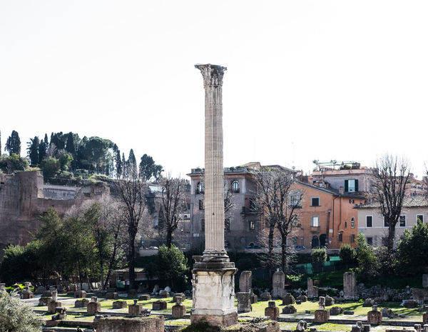 Antico Ancient Ancient Civilization Architecture Building Exterior Built Structure Cemetery City Clear Sky Colonne Day History No People Old Ruin Outdoors Sky Travel Destinations Tree