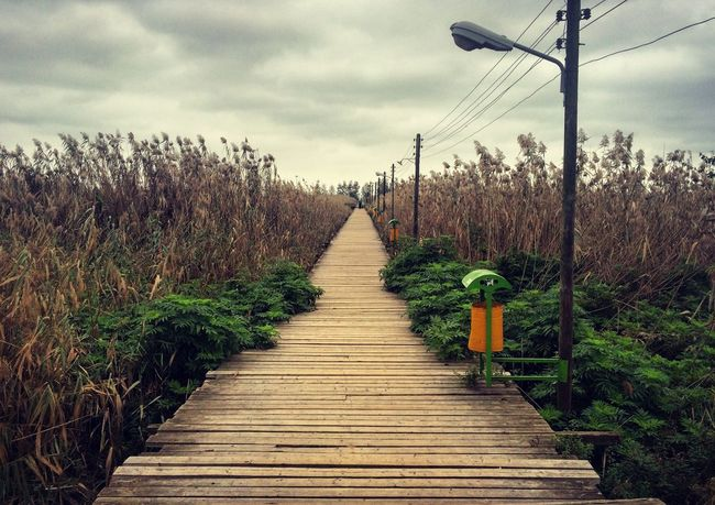 Iran♥ Iran Gilan Astane Pole Chubi Kiyashahr The Wooden Bridge Bridge Autumn Fall