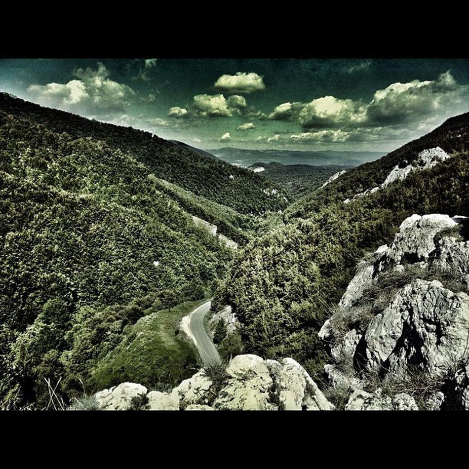 Slovakia Mojtin Summer Holiday forestinstagram instadaily snapseed mountainroad