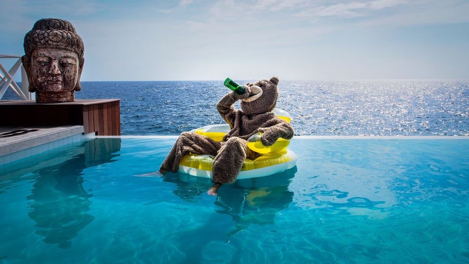 Beautiful stock photos of cool, Bear Suit, Bottle, Costume, Curacao