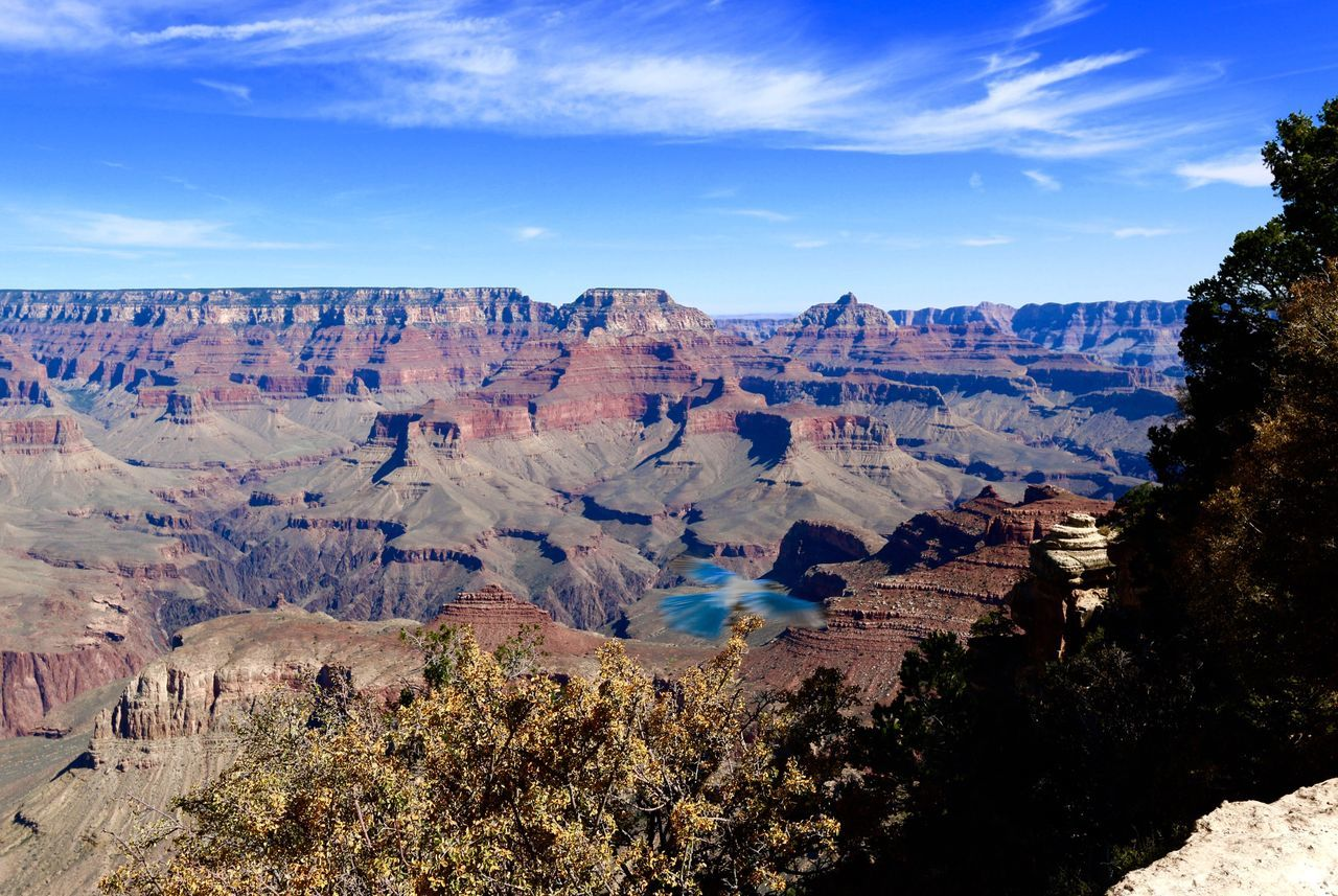 Nature Beauty In Nature Scenics Tranquil Scene Tranquility Geology Sky Physical Geography Non-urban Scene Landscape Remote Day Rock - Object Travel Destinations Outdoors Arid Climate No People Extreme Terrain Canyon Tree Grand Canyon National Park USA