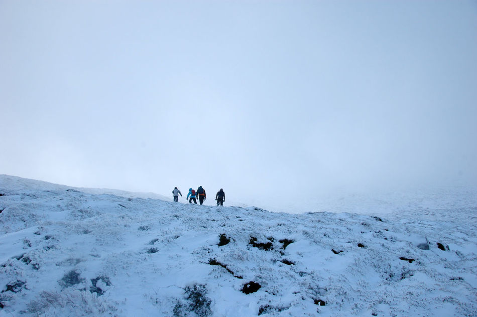 Beautiful stock photos of group, Clear Sky, Cold Temperature, Copy Space, Day