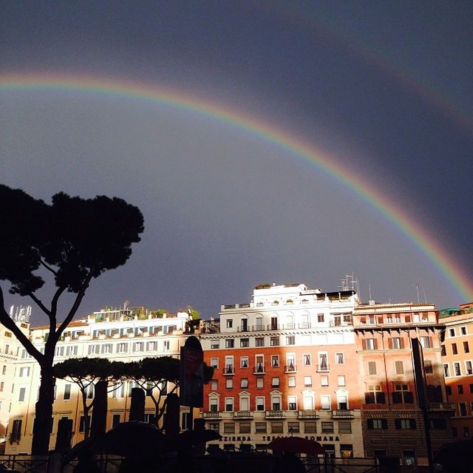 Metti un Raimbow a Largo Argentina (Part one).