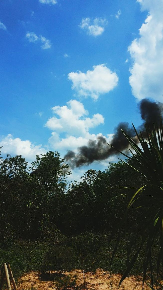 Pollution.....😫😫😫