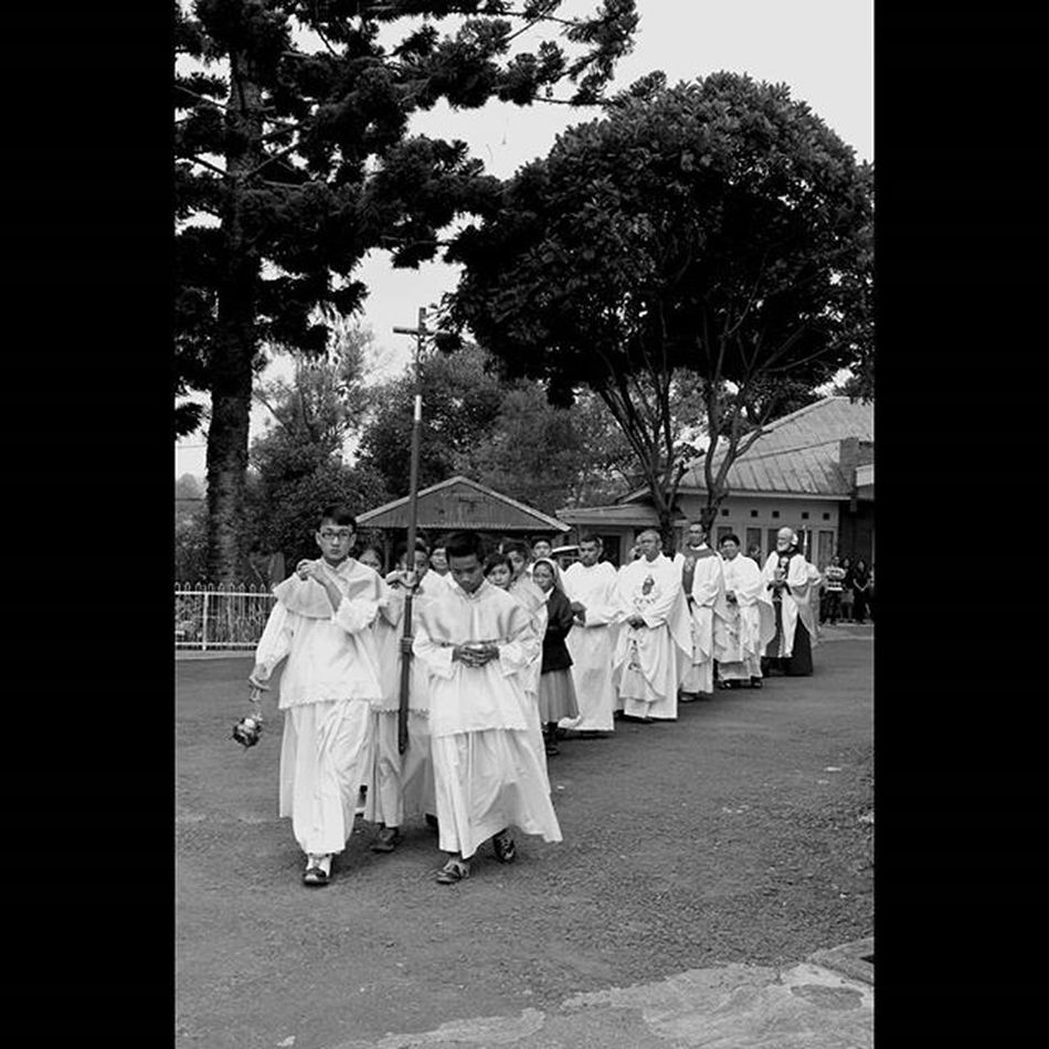 PestaEmasImamat PaterMartinHarunOFM Putraaltar Perarakkan Konselebran blackandwhitephotography instasize