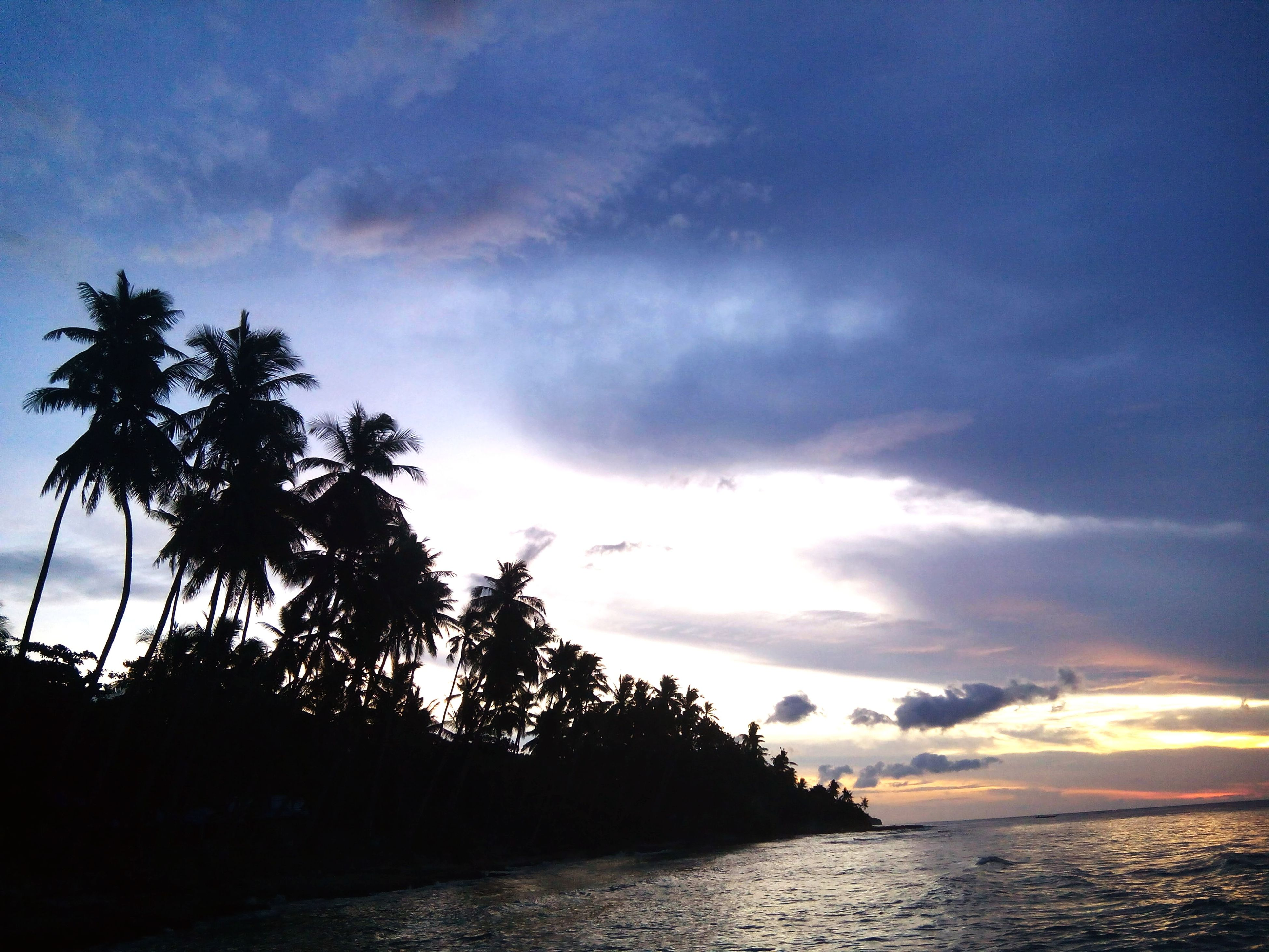 sky, water, sea, tranquil scene, scenics, tranquility, silhouette, tree, beauty in nature, palm tree, sunset, cloud - sky, horizon over water, nature, cloud, idyllic, waterfront, cloudy, beach, dusk