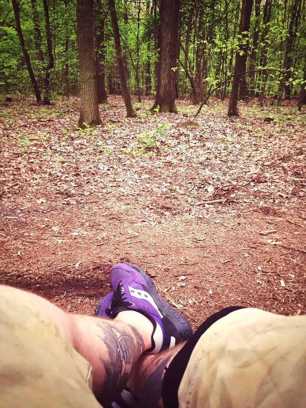 Woods Forest Green Spring Chilling