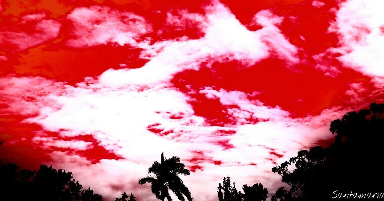 Todos los cambios, aún los más ansiados, llevan consigo cierta melancolía Red No People Nature Day Outdoors Enjoying Life Pura Vida ✌ Costa Rica Good Morning EyeEm Nature Tranquility Healthy Lifestyle Beauty In Nature Scenics Sky Travel Hiking Nature Is Art