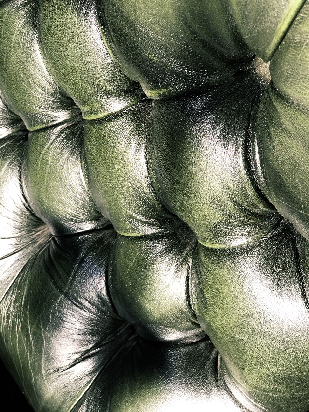 Green leather chair detail. Bristol, Rhode Island, USA. Photo by Tom Bland. Chair Chairs Close-up Decor Detail Furniture Furniture Design Green Green Color Green Leather Chair Indoors  Interior Interior Decor Interior Views IPhone IPhoneography Leather Leather Chair Old-fashioned Style Textural Texture Textured
