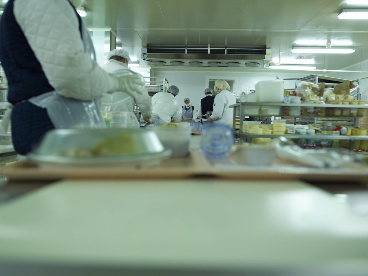 Food Food And Drink Indoors  Preparation  hospital kitchen Hospital Belgium Focus On Background Depth Of Field Preparation  Kitchen Professional Industrial Meal Trays