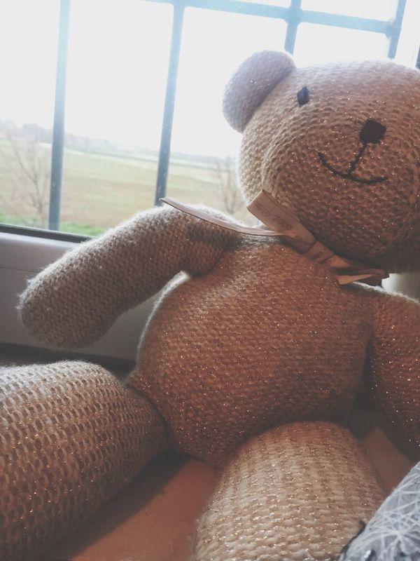 Sweet Toy Teddy Bear