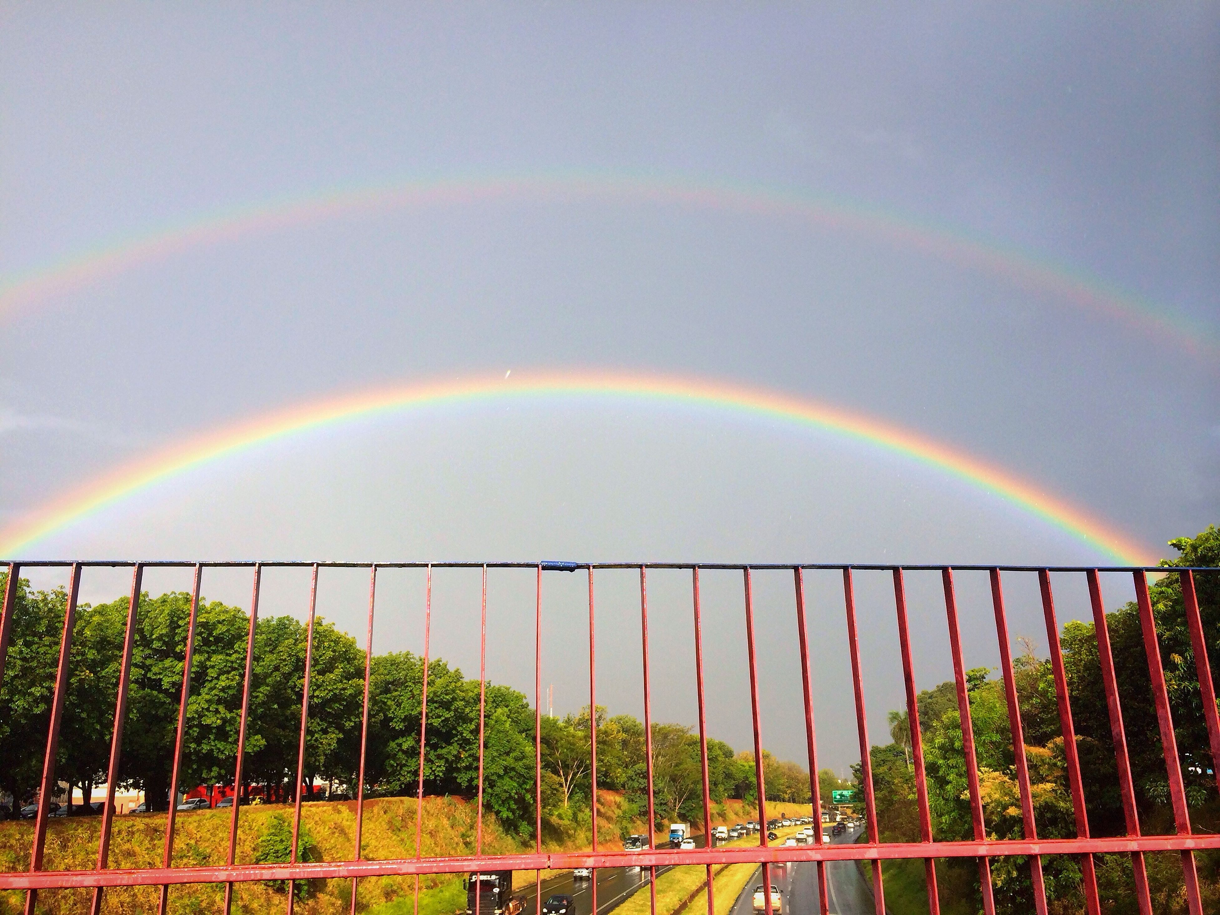 rainbow, sky, connection, multi colored, tree, scenics, beauty in nature, nature, tranquility, bridge - man made structure, green color, tranquil scene, cloud - sky, landscape, railing, idyllic, outdoors, growth, no people, bridge