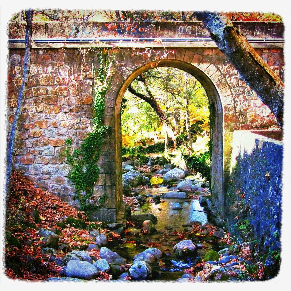 Pasemos al otro lado... Eye4photography  Taking Photos Water Nature