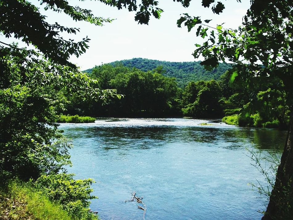 Allegheny River Water Beauty Beauty In Nature Sky Nature
