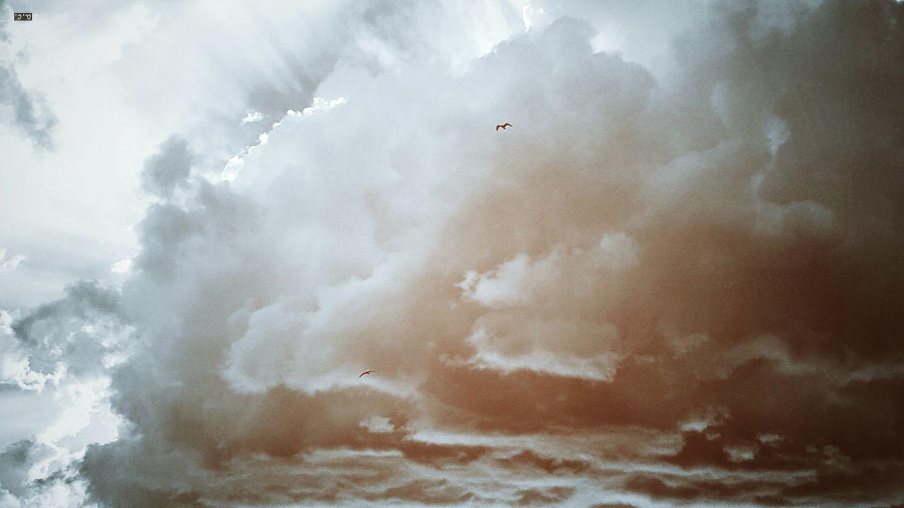 Peachylicious Scenics Dramatic Sky