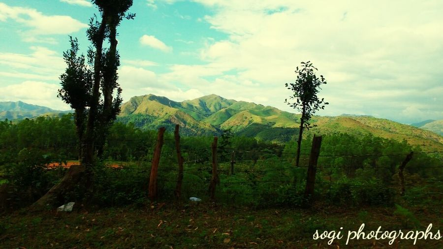 Hillside Mountains Ghats  Incredible India Kudremukh Greenery Travel Photography Trip Evening Nature Photography Wildlife & Nature Flora