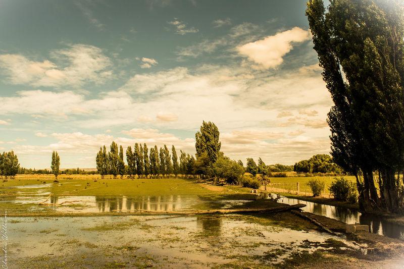 28 De Julio Beauty In Nature Chubutargentina Paisaje Sky Tranquil Scene Tranquility Vintage Landscape