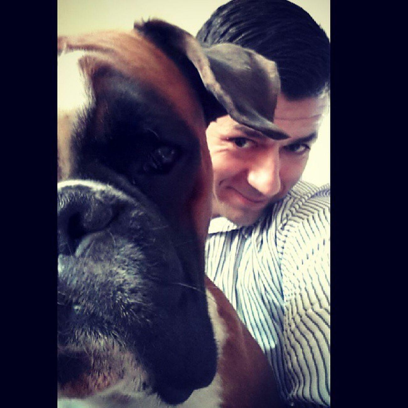 Selfie Insta_dog Boxer