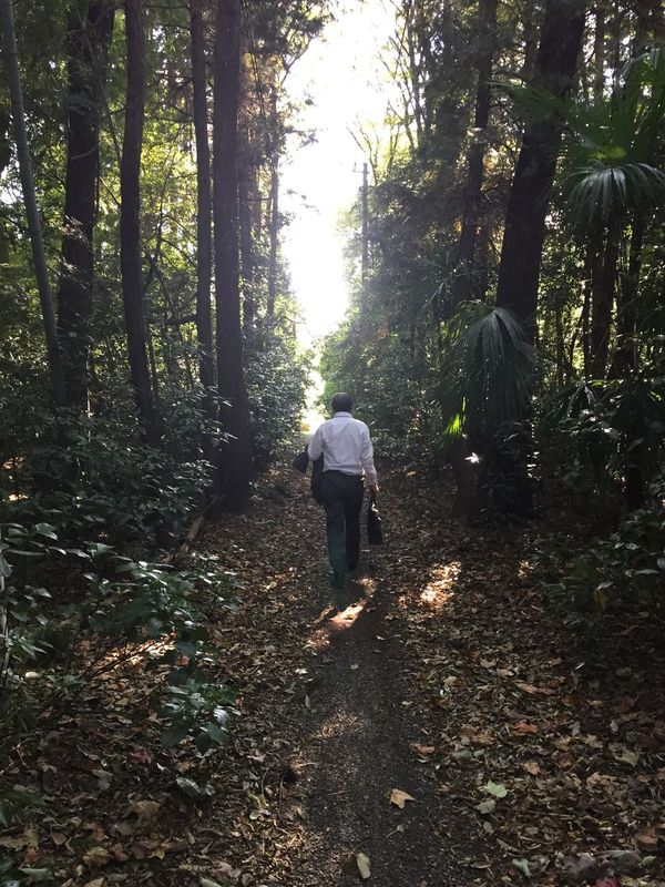 Businessman In Forest