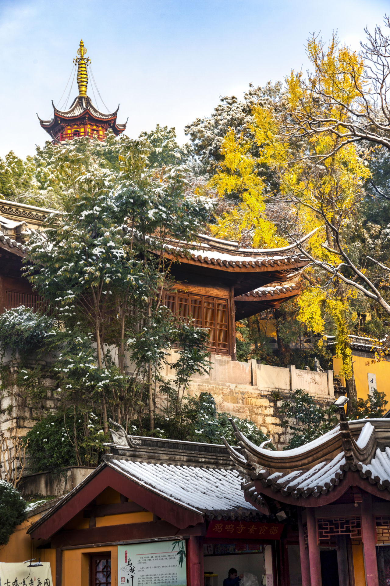 Nanjing JiMing Temple Famous Places Tourist Attractions Tourist Destination Architecture Building Exterior Built Structure City Day Ginkgo Trees Ginkgo Trees Gold Colored No People Outdoors Pagoda Place Of Worship Roof Sky Snow Tradition Tree