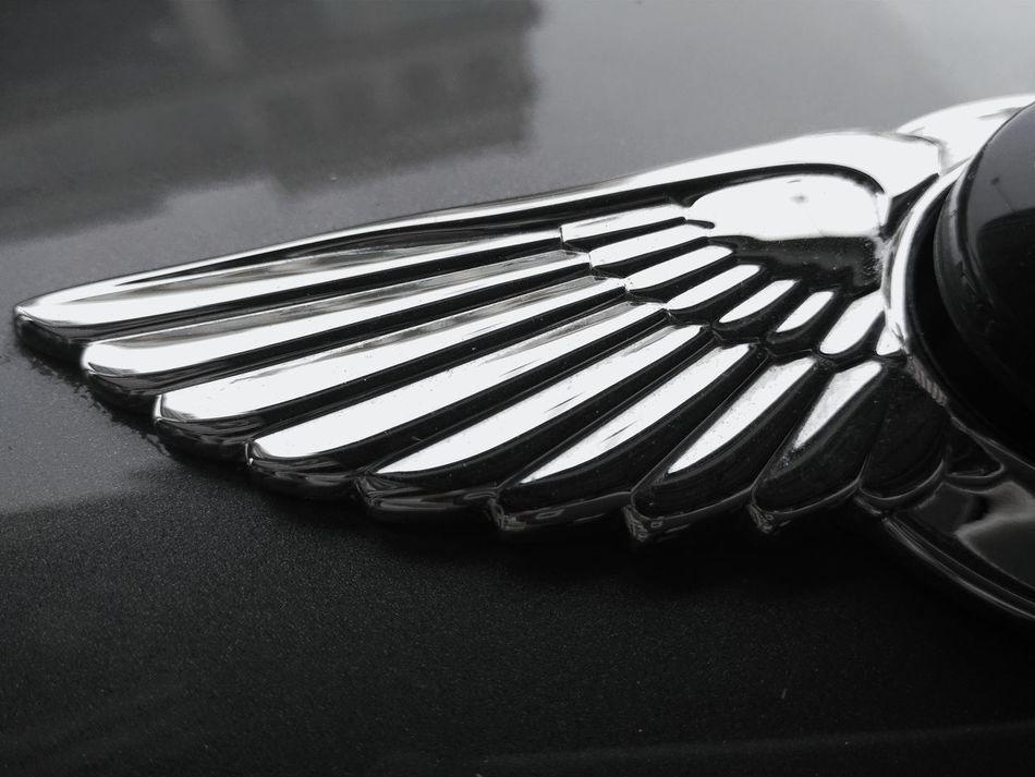 Close-up Textures Texture Texture And Surfaces Metals Chrome Metal Wing Metal Wings Logo Logo Design Benly Car Hood Reflections Car Hood