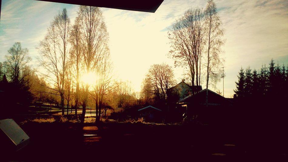 Sunrise Coldweather November