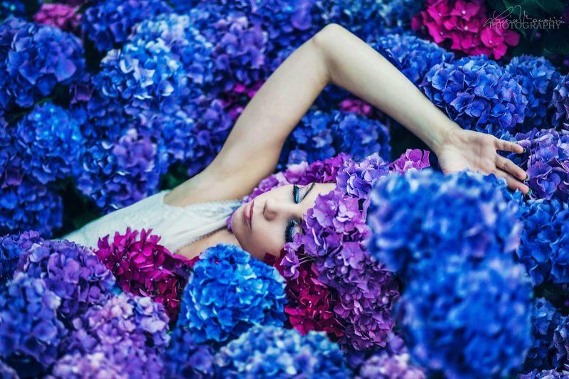 Muse: Valentina Flower Blue Women Beautiful Woman Color Portrait Nature Beauty Real People Hydrangea Girl