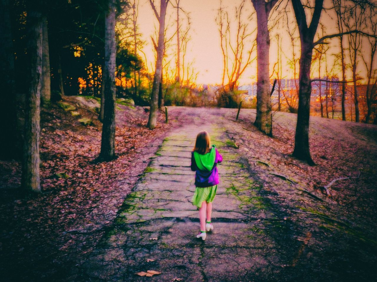 Rear View Walking Girls One Person The Way Forward Childhood Outdoors Trees Photo Art Nature Path Sunset Colors