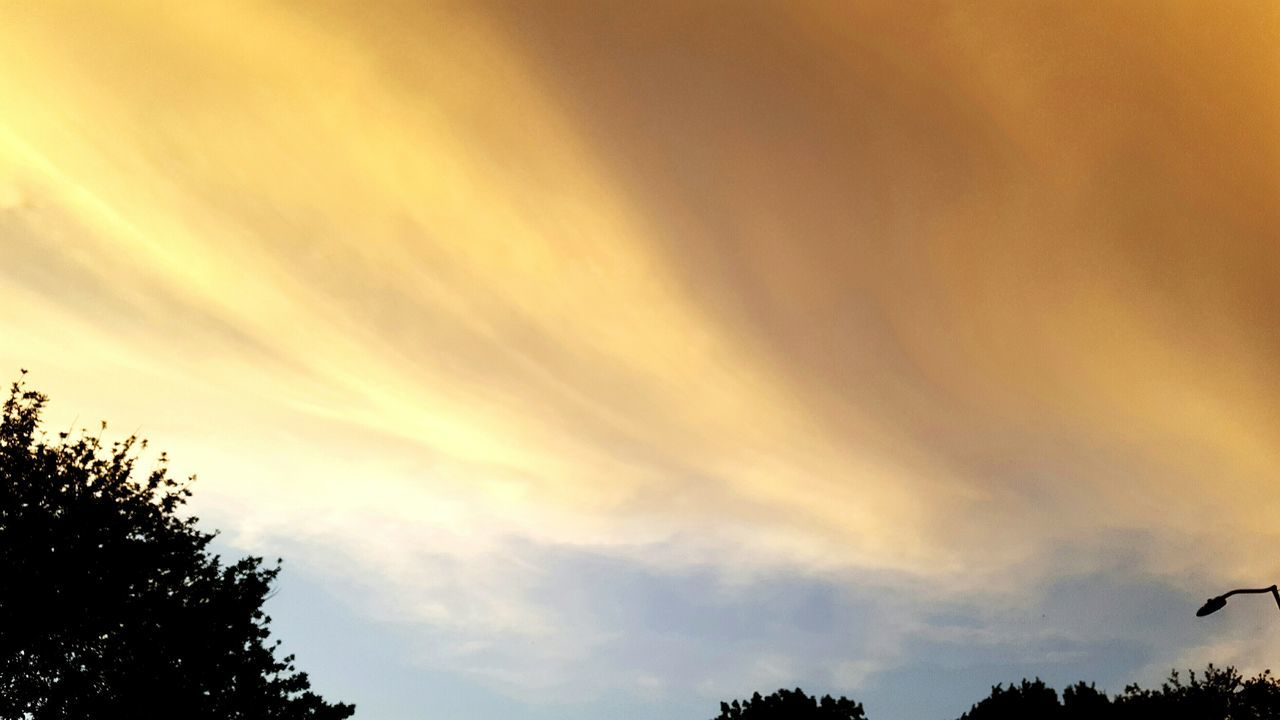 sky, nature, low angle view, beauty in nature, tree, cloud - sky, sunset, silhouette, tranquility, scenics, no people, tranquil scene, outdoors, day