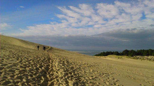 People And Places Desert Landscape Landscape France Dune Du Pyla Dune Du Pilat Arcachon Winter