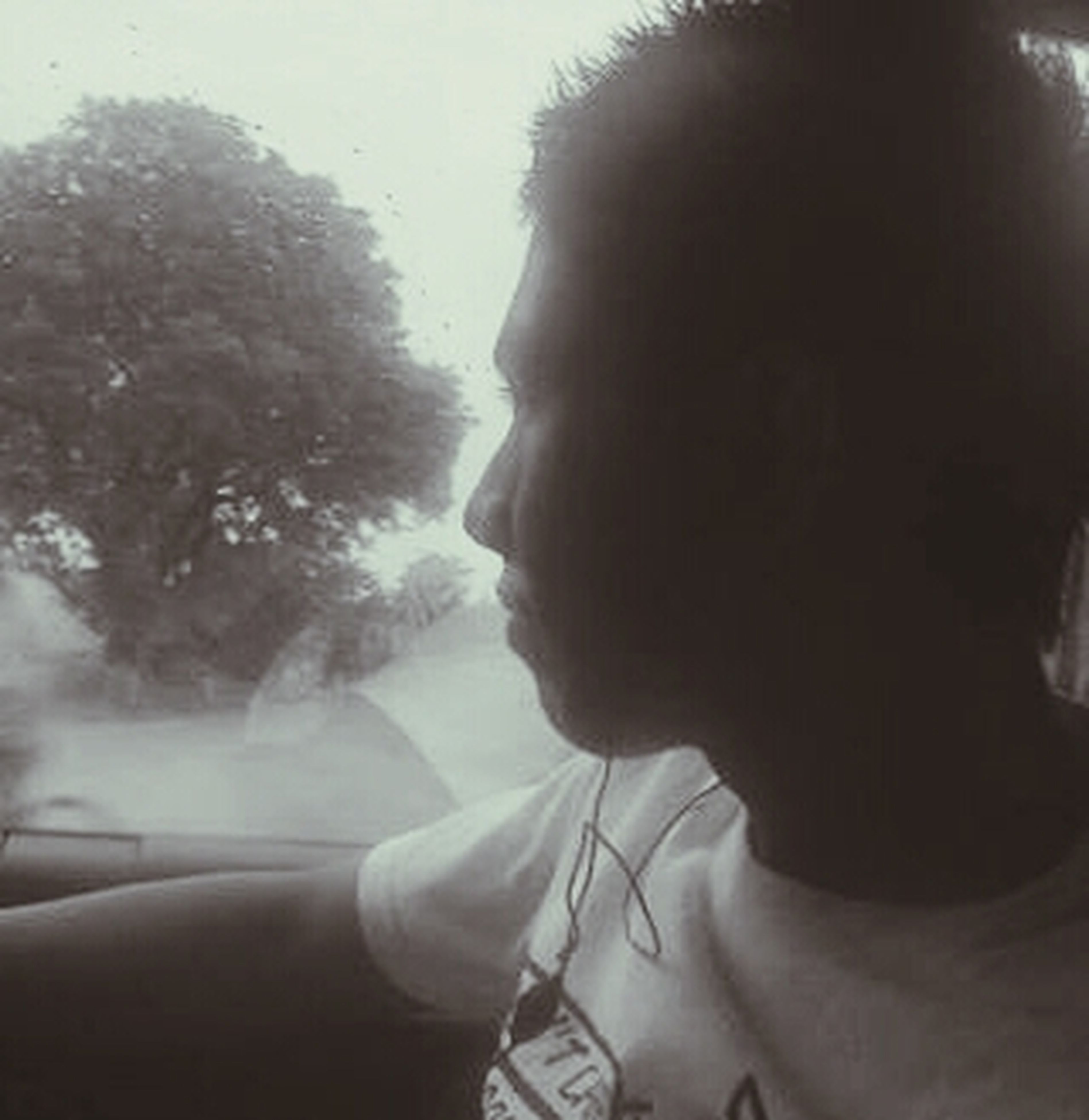 lifestyles, leisure activity, headshot, men, indoors, young adult, tree, window, glass - material, vehicle interior, waist up, young men, fog, transparent, rear view, travel, side view, day