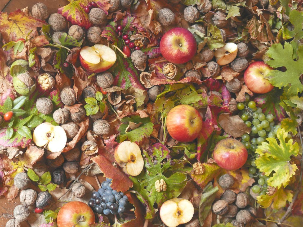 Beautiful stock photos of apple, Abundance, Apple, Autumn, Backgrounds