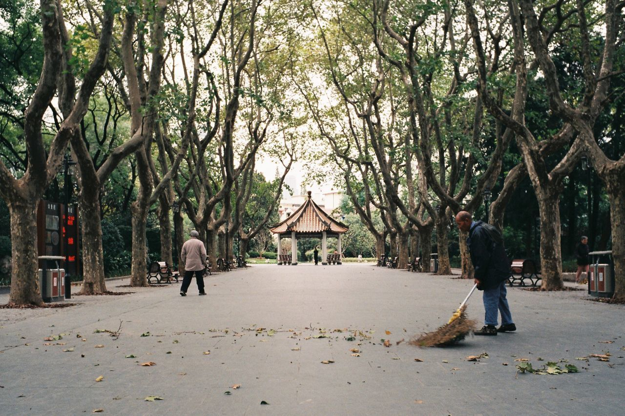 Cleaner Capture The Moment My Street Photography From My Point Of View Taking Photos Shanghai Streets Streetphotography Leicacamera Leica M6 Film Embrace Urban Life Urban Exploration City Life Autumn Tree Outdoors Full Length Shanghai Photography Park Autumn Leaves