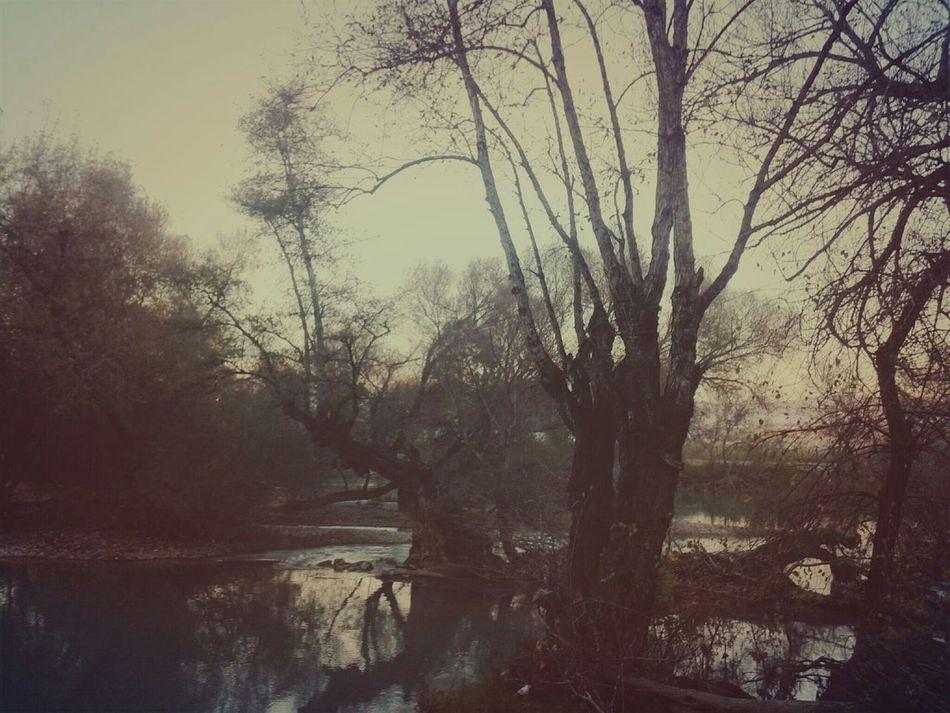 Lake Trees Relax Auntumn Survival Sunset Beautiful Day Walking Alone...