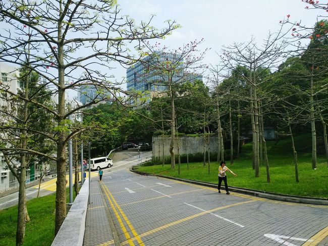 HKUST University Campus Life Campus HongKong Residential Building Student Life Student Residence Slope Road Business Building Highrise Glass Building Apartments Van Climb Trees Blue Sky Clear Bright Day Afternoon