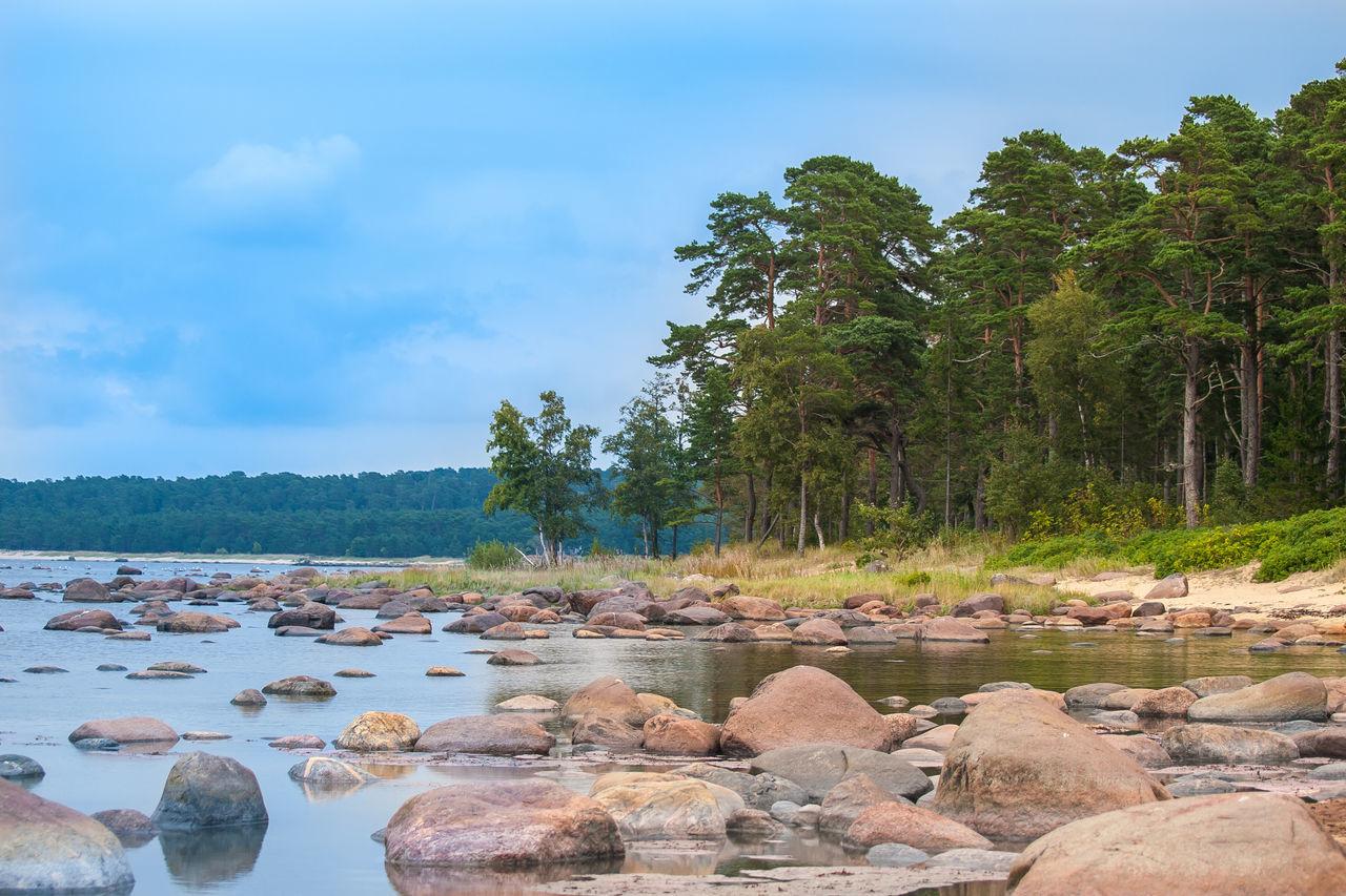 Day Estonian Landscape Forest Landscape Nature No People Outdoors Rock - Object Rocky Shore Scenics Shoreline Sky Tree Water