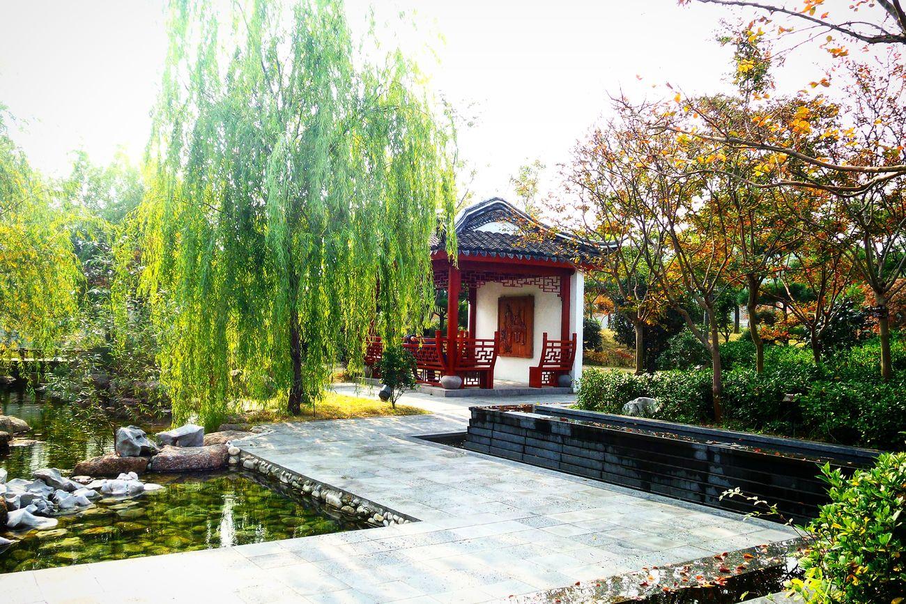 순천 순천만정원 중국정원 세계정원 중국 정원 China China Garden Garden