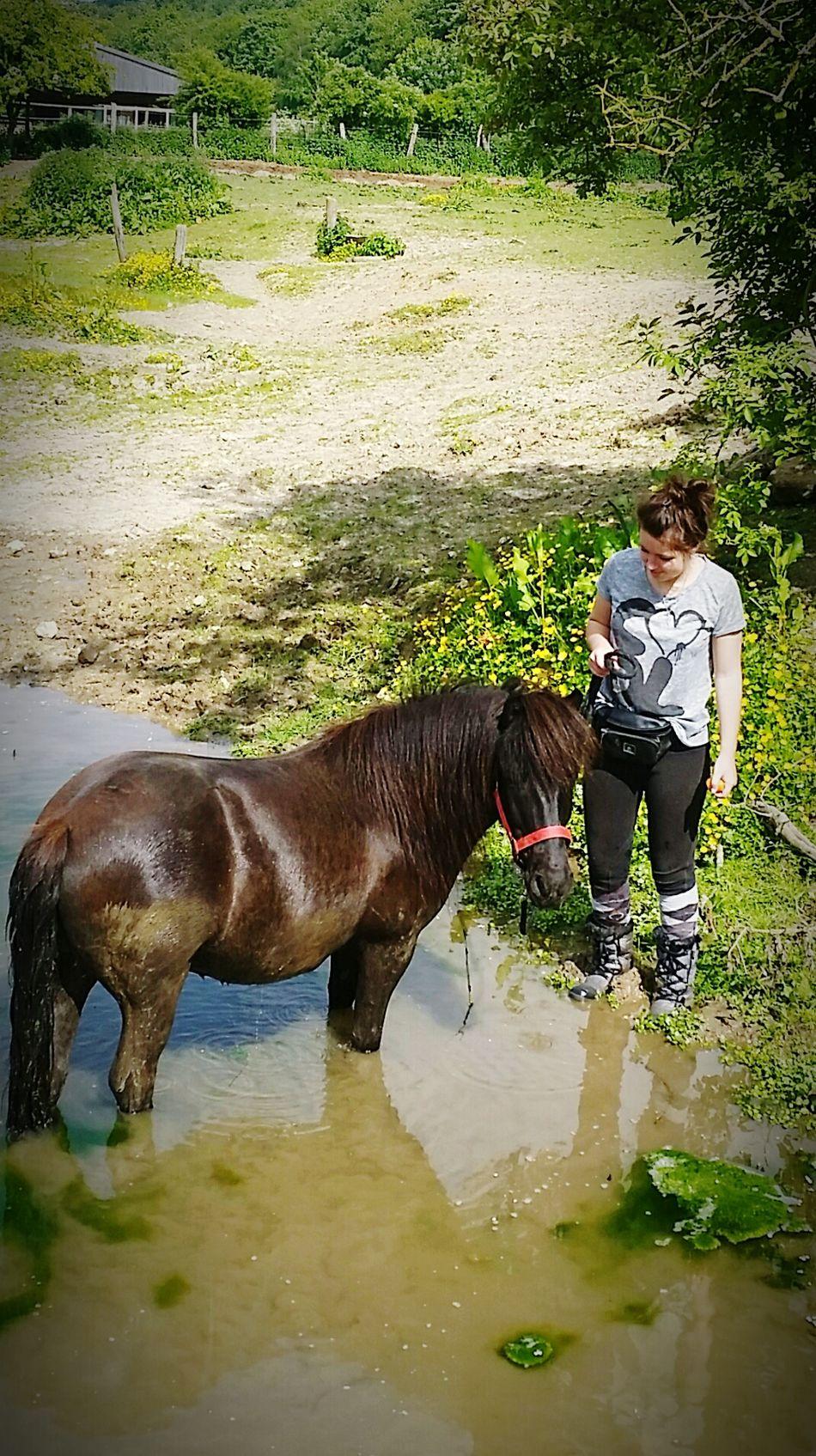 Une après midi de rêve avec le plus beau qui s'est terminée par un tour dans la rivière.. 💙💙 Horses LoveMyPony