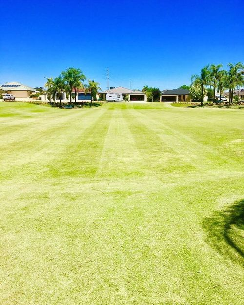 Blue Tree Grass Sky Architecture Luxury Building Exterior Built Structure Clear Sky No People Nature Green Color Green - Golf Course Scenics Outdoors Day Tranquil Scene Golf Palm Tree City
