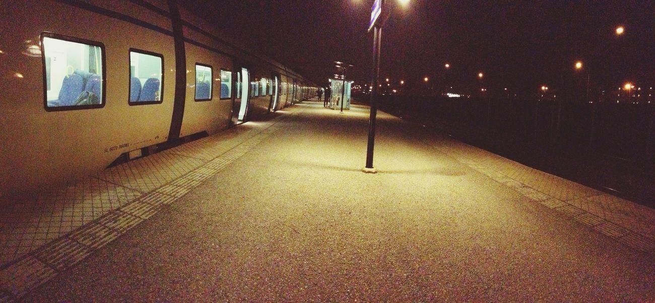 Norrviken by night ⭐️
