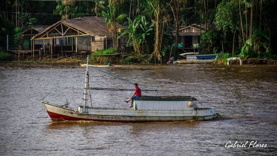 Nature Macapá Amapá Amazonia Brasil Rio Amazonas The Essence Of Summer