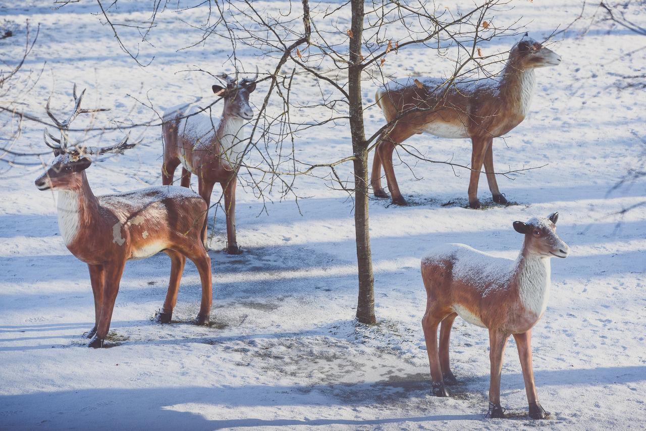Fake Animals Animals Artificial Decoration Elk Fake Outdoors Plastic Roe Deer Snow Sun Winter