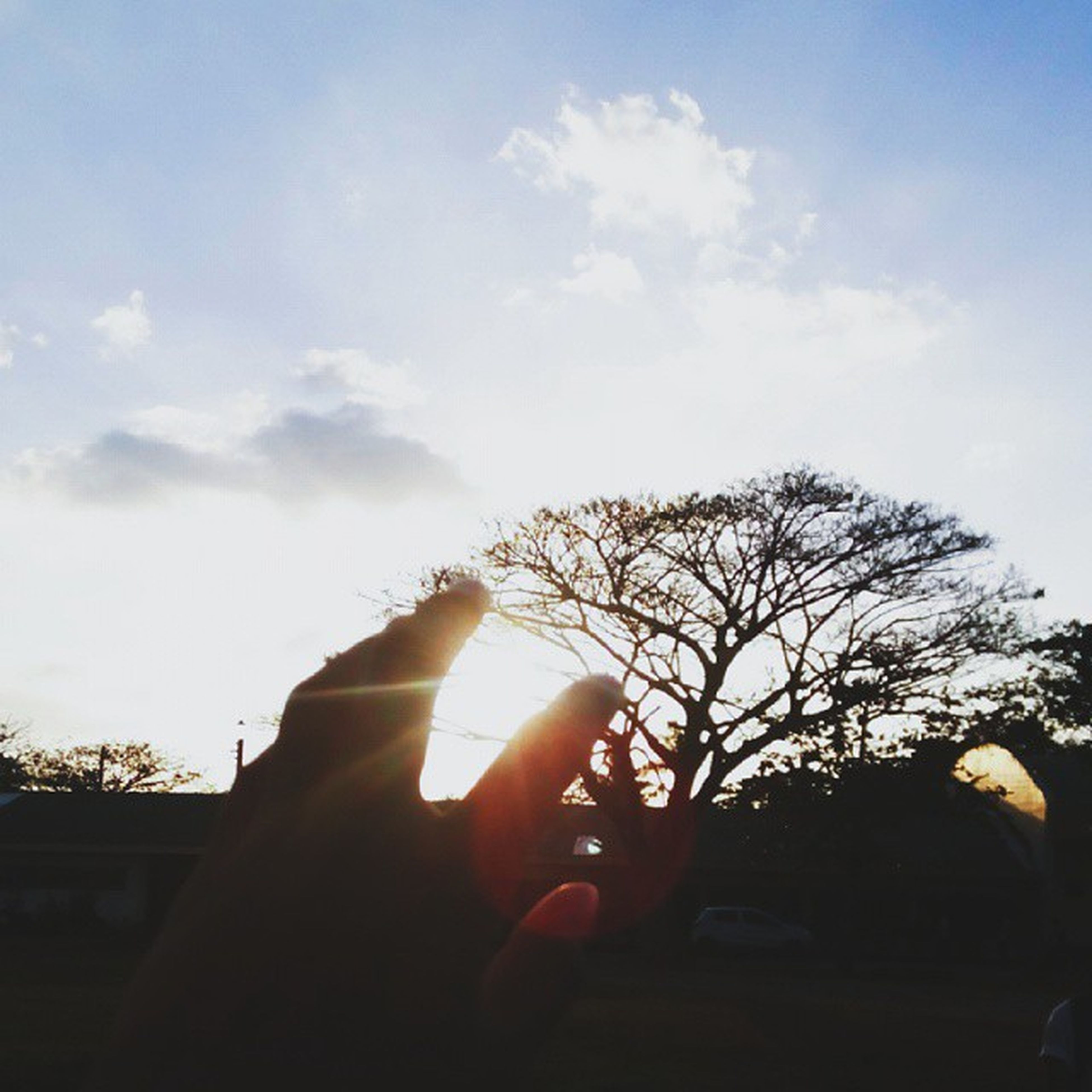 silhouette, person, tree, sky, part of, sun, sunset, sunlight, unrecognizable person, cropped, personal perspective, sunbeam, human finger, lens flare, low angle view, nature, back lit
