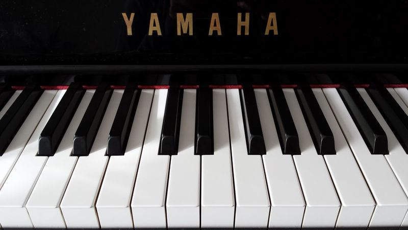 My world Piano Music Musical Instrument Arts Culture And Entertainment Piano Key Close-up Feel The Music Listen To To The Sound