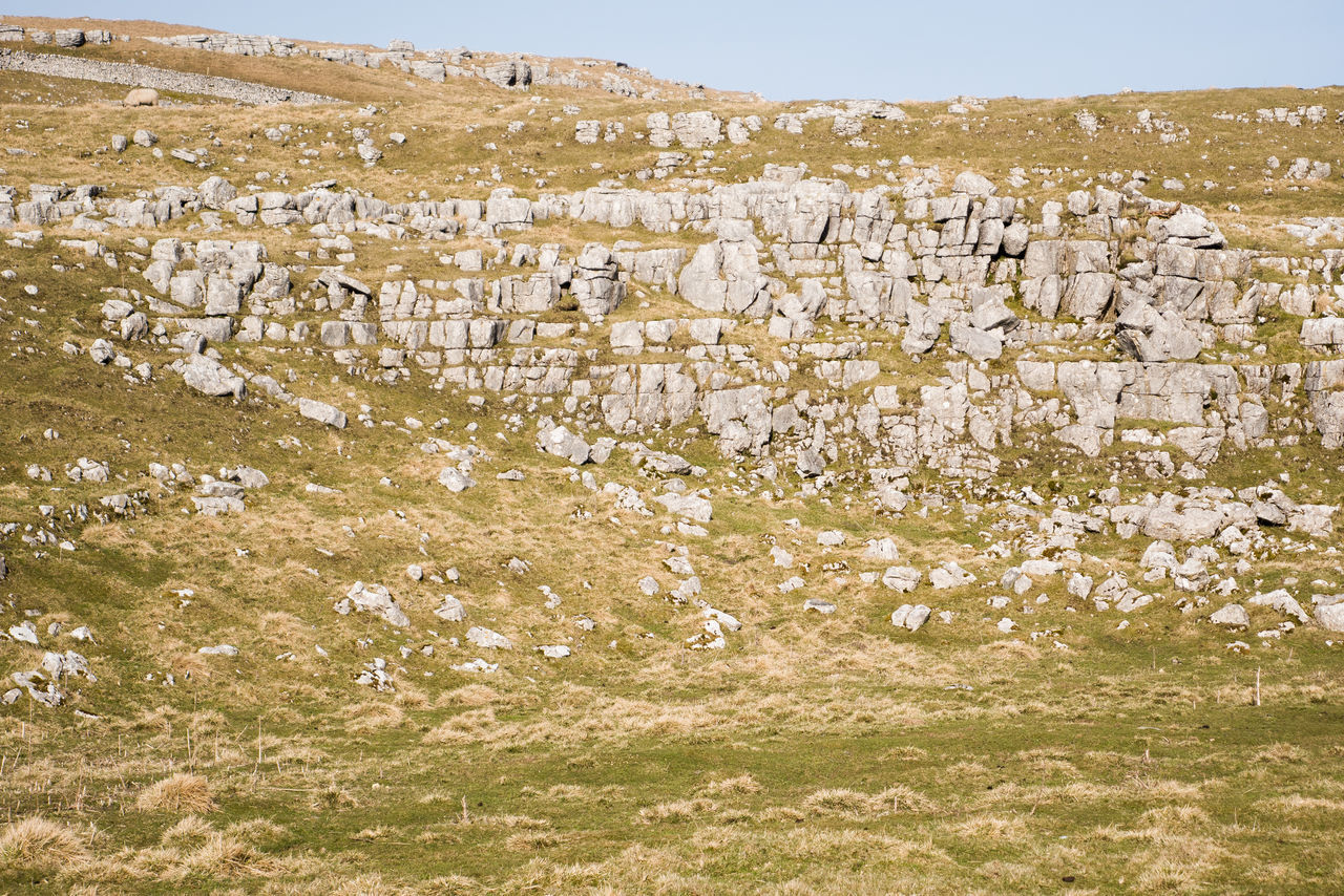 Cliff Cliff Face Countryside Grass Landscape Outdoors Rock Rock Face Rocks Rural Scene Sunlight And Shadow Yorkshire Yorkshire Dales