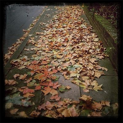 Autumn in City of London by drowned in caffeine