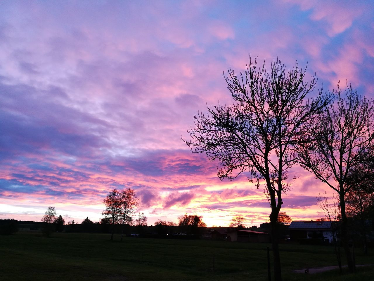 silhouette, sunset, beauty in nature, scenics, tranquil scene, sky, bare tree, nature, tranquility, tree, landscape, cloud - sky, no people, outdoors, day