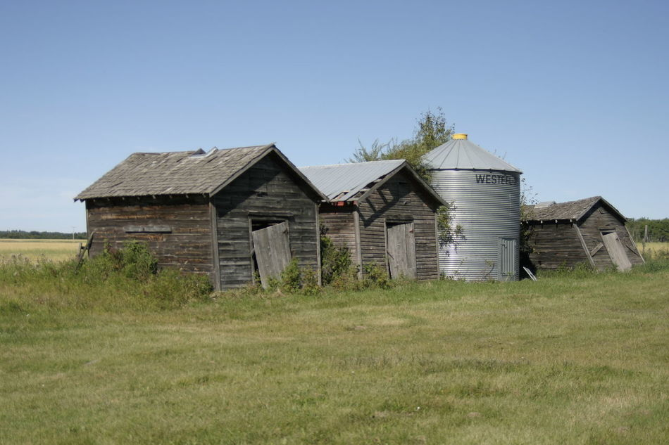 Beautiful stock photos of farm, Architecture, Built Structure, Clear Sky, Copy Space